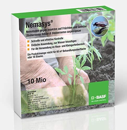 Nemasys® BASF Nematoden 10 Mio. (60m²) gegen Insekten auf Früchten und Gemüse (Steinernema feltiae & Steinernema carpocapsae)