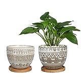 5.5in Geometry Ceramic Planter Large Round Succulent Planter Flower Pot Indoor...