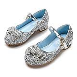 YOSICIL Disfraz Princesa Zapatos Frozen Elsa Zapatillas de Baile Zapatos de Lentejuelas Antideslizante Zapatos de Fiesta Cumpleaños Boda Infantil 24-34 EU