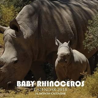 Baby Rhinoceros Calendar 2018: 16 Month Calendar