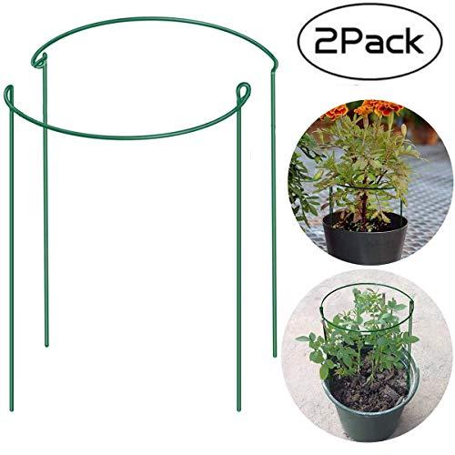 Halbrunde Pflanzen-Rankhilfe aus Metall, klein, für den Garten, Rankgitter aus Edelstahl, Klettern, Gemüse, Blumen, Obst, Kartoffeln, Tomaten, Pfingstrose, Rose, Aussaatpfahl, für den Innenbereich