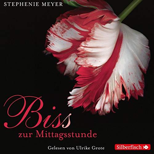 Bis(s) zur Mittagsstunde audiobook cover art