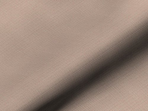 Dobladillo & Viebahn GmbH & Co. KG Voyage 624811408001 - Tela ignífuga para muebles, color beige