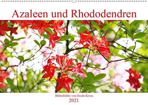 Azaleen und Rhododendren Blütenbilder (Wandkalender 2021 DIN A2 quer)