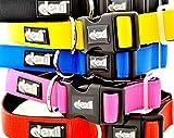 Dexil Elite Range Neoprene Padded Extra Strong Adjustable Small-Medium Pet Dog Collar (Liquorice Black, Small-Medium 25-43cm x 25mm)