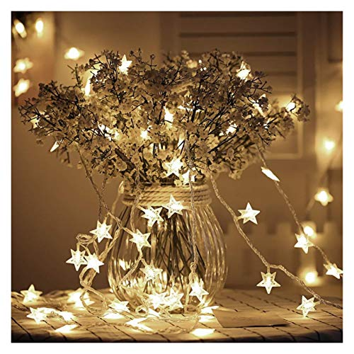 XYACM Battery Operated String Lights, LED Bulb Warm White String Lights, Decorative Timer Fairy Light for Christmas/Wedding/Party Indoor and Outdoor (Color : Warm White, Size : 1.5m)