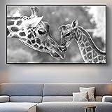 QZROOM Decoración de Arte Moderno Madre y bebé Jirafa Animal Lienzo Pintura en la Pared Póster Artístico e Impresiones Imagen para la Sala de Estar -60x90cm Sin Marco