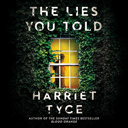 The Lies You Told  By  cover art