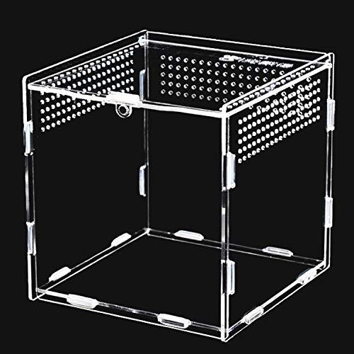 Keweni Feeding Box, 360 ° Transparent Acryl Terrarium Behälter für Spide, Skorpion, Käfer, Gottesanbeterin, Reptilien Lebensraum