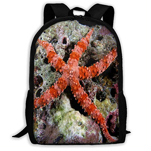 Rucksack Sea Star Auf Pinterest Zipper School Bookbag Daypack Travel Rucksack Sporttasche