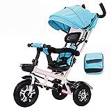 Axdwfd Infantiles Bicicletas Triciclo de niños Pedal de niños Bicicleta con Techo Parasol 2-5 años de Edad Carro de bebé Niños Niñas Juguete Coche Regalo para niños y niñas (Color : Azul)