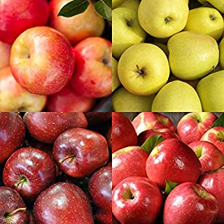The Fruit Company Mountain Apple Medley Gift Box (Deluxe- 15 pc)- A fresh fruit box filled with an assortment of Honeycrisp, Golden Supreme, Ruby Red, and Pink Lady Apples from the Pacific Northwest