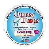 Queasy Drops Nausea Relief Candy - Sugar Free...