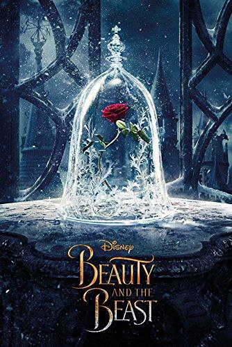 Disney - Die Schöne und das Biest - Enchanted Rose - Film Poster Plakat Druck - Größe 61x91,5 cm + 1 Packung tesa Powerstrips® - Inhalt 20 Stück