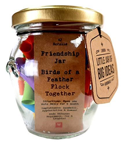 "Little Jar of Big Ideas Barattolo con frasi a tema ""amicizia"", con scritta Friendship Jar - Birds of a Feather Flock Together, artigianale"