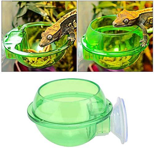 HEEPDD Reptile Feeder, Saugnapf Anti-Escape Reptile Futternapf Transparenter Wurm Lebendfutterbehälter für Eidechsen Chamäleon Gecko