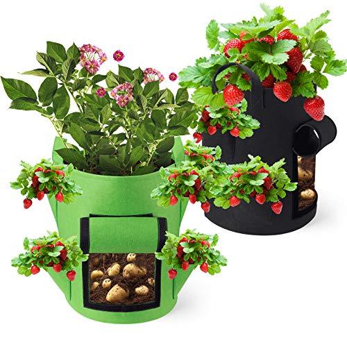 Kartoffel Pflanzsack Erdbeeren Pflanzen...