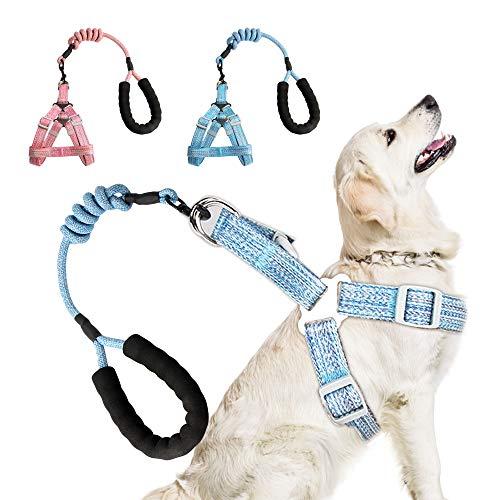 Besylo Dog Sicherheitsgurt,hunde sicherheitsgurt kleine hunde,2 Stück Classic Solid Color Alltags-Hundegeschirr mit gepolstertem Griff für kleine mittelgroße Hunde zum Wandern (Hellrosa + Ozeanblau)