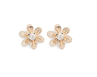 Aldo Stud Earring for Women, Multi Stones