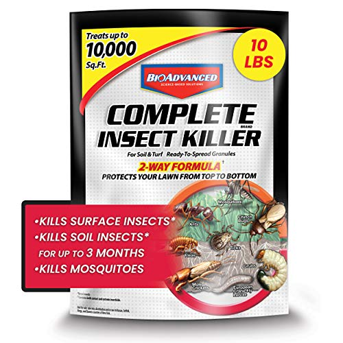 BAYER CROP SCIENCE 700288S Complete Insect Killer for Soil & Turf Pest Control, 10-Pounds, Ready-to-Spread Granules, 10 lb