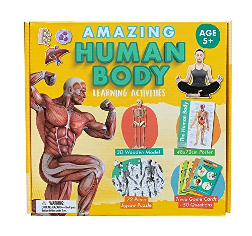 Amazing Human Body Learning Activity Set | Includes 3D Model, Poster, Trivia Cards & Jigsaw Puzzle. Age 5+