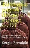 Birmania: pagode dorate e monaci scalzi: Aung San Suu Kyi fra i Rohingya e il dragone cinese (Viaggi e avventure Vol. 9) (Italian Edition)