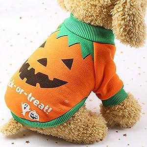 Hongfutong Halloween Pet Apparel Costume, sorcière Citrouille Motif vêtements Coton Pull T-Shirt Vêtements Tenue