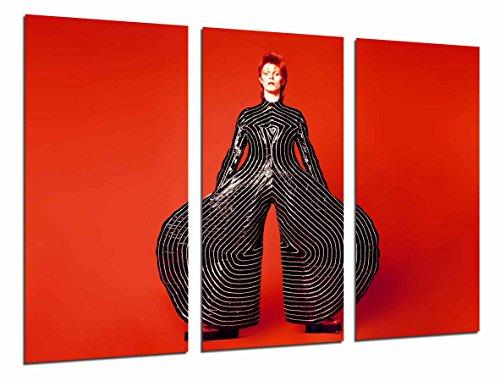 Cuadros Camara Poster Fotográfico David Bowie, Pantalones Famosos, Rojo Tamaño total: 97 x 62 cm XXL, Multicolor