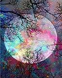 Gofission - Pintura por números, árbol de escena de luna, 40,6 x 50,8 cm (luna, sin marco)