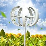 Generador de viento vertical con control, 600 W, generador de energía eólica (blanco, 12 V)