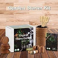 屋内ハーブガーデンスターターキット-有機、GMO以外のハーブの種子-バジルタイムパセリコリアンダーの種子、鉢植え用土、鉢、DIY成長キット、屋内ハーブの成長用、キッチン、バルコニー、窓辺