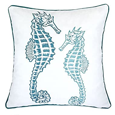Homey Cozy Embroidery Teal Velvet Seahorse Throw Pillow Cover,Ocean Series Nautical Decorative Pillow Case Coastal Beach Theme Home Decor 20x20,Cover Only