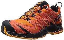 Salomon XA PRO 3D GTX, Herren Traillaufschuhe, Orange (Clementine-X/Tomato Red/Yellow Gold), 49 1/3 EU (13.5 Herren UK)
