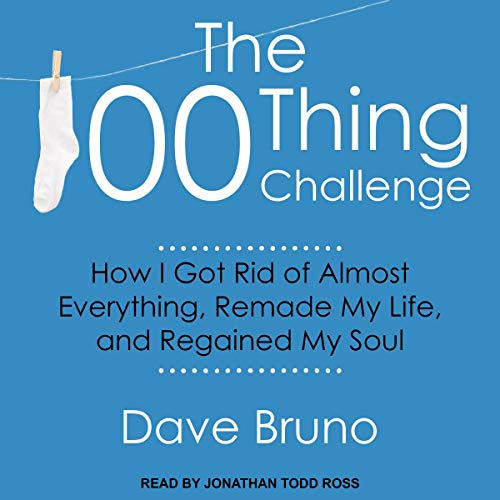 The 100 Thing Challenge cover art