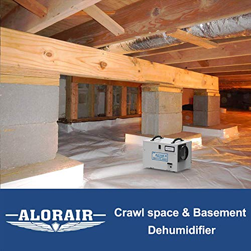 AlorAir Basement/Crawl space Dehumidifiers Removal 120 PPD (Saturation) 55 PPD (AHAM), 5 Years Warranty, HGV Defrosting, cETL, Epoxy Coating, up to 1,300 Sq. Ft, Remote Monitoring