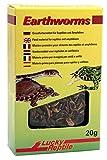 Lucky Reptile Earth Worms 10G, Confezione da (2X 10G)
