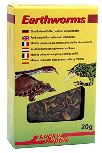 Lucky Reptile Earthworms 10g, getrocknete Regenwürmer für Reptilien, Vögel und andere Tiere