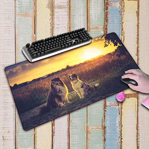 Animal Print in the Sun Mouse Pad Computer Accessories Mousepad Keyboard Pc Pad Game Gamer Mats Laptop Pad 600X300X3Mm