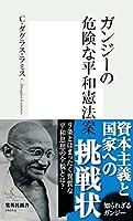 ガンジーの危険な平和憲法案 (集英社新書)