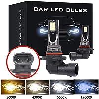 9005 HB3 LED電球スーパーブライトH7 H1 H11 H8 H9 9006 HB4自動LEDカーフォグ信号ターンライト駆動ランプホワイトアンバーブルー3030 (Emitting Color : 8000K White Blue, Socket Type : 9006/HB4)