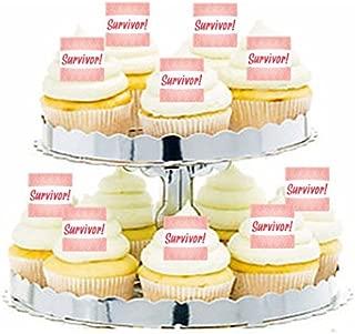 CakeSupplyShop Item#24247 Breast Cancer Survivor! Cupcake / Food / Appetizer Decoration Topper Picks -12ct