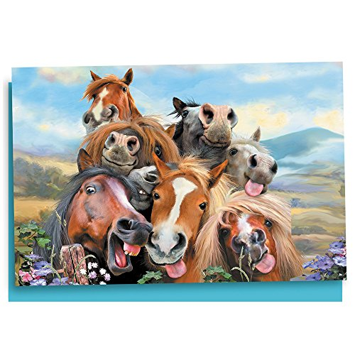 Tree-Free Greetings EcoNotes 12 Count Horses Selfie All Occasion Notecard Set with Envelopes, 4 x 6 Inches (FS56896)