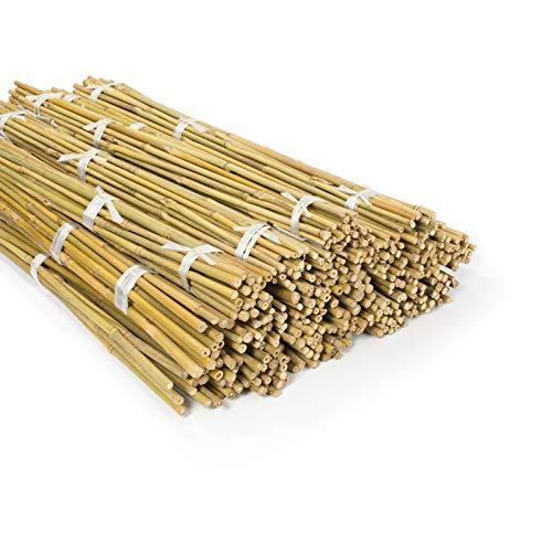 casa pura Bambusstäbe Bahia in Gärtner-Qualität | Bambus Rankhilfe Pflanzenhalter Pflanzstab Rankstab | Verschiedene Längen und Sets (90 cm Länge, 60 Stück)