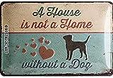 Nostalgic-Art Cartel de Chapa Retro A House is Not a Home – Idea de Regalo para los dueños de Perros, metálico, Diseño Vintage Decorativo, 20 x 30 cm