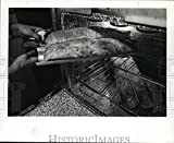 Historic Images - 1976 Press Photo Cooking Special breads for All Occasions - orb63688
