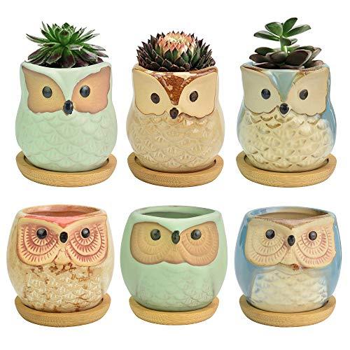 QUCUMER 6 Pcs Maceta Buho Mini Macetas de Ceramica Macetas Pequeñas Decorativas Macetas para Cactus y Suculentas con Agujero de Desagüe para Interiores Exteriores Balcones Sala Jardín + 6 Platos