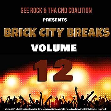 Brick City Breaks, Vol. 12
