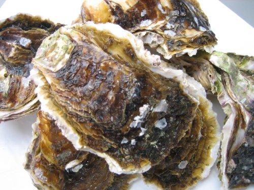 岩牡蠣L 10kg 生食用