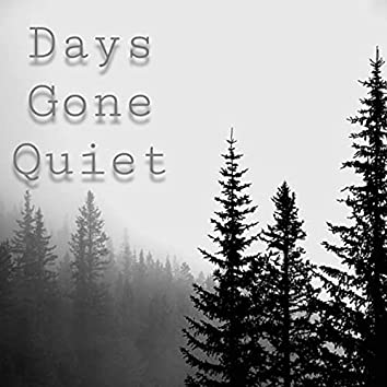 Days Gone Quiet (Cover)