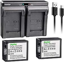 Kastar BLB13 2X Battery + USB Dual Charger for Panasonic DMW-BLB13, DMW-BLB13E, DMW-BLB13GK and Panasonic DE-A49, DE-A49C Work with Panasonic Lumix DMC-G1, DMC-G2, DMC-G10, DMC-GF1, DMC-GH1 Cameras
